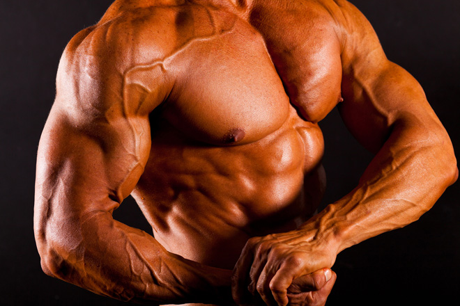 Testosterone is a Steroid in and near St Petersburg Florida